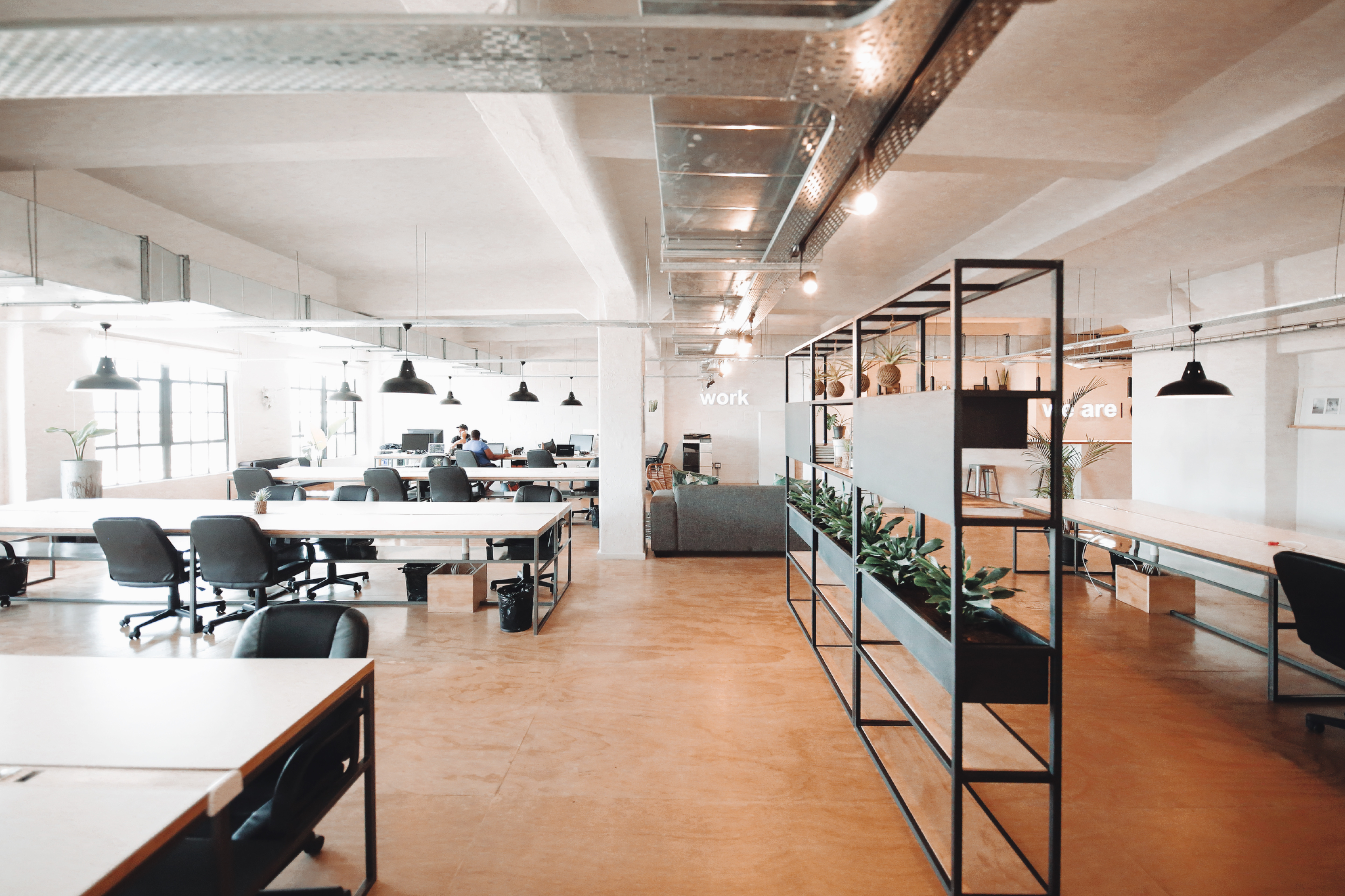 Co-working spaces –  What makes them worth the hype?